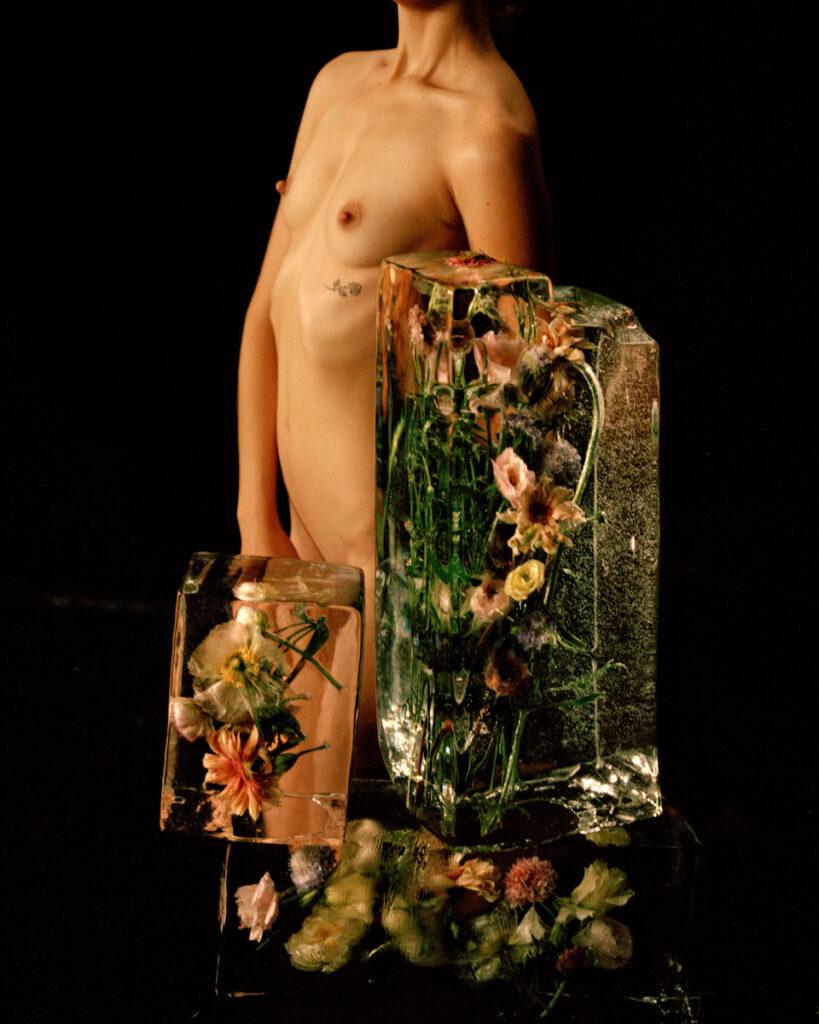 Amanda Charchian - Frozen Flower